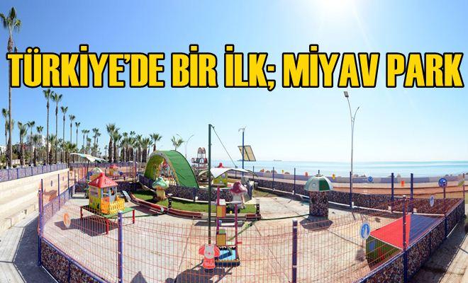 Büyükşehir'den Kediler İçin Türkiye'de Bir İlk; Miyav Park