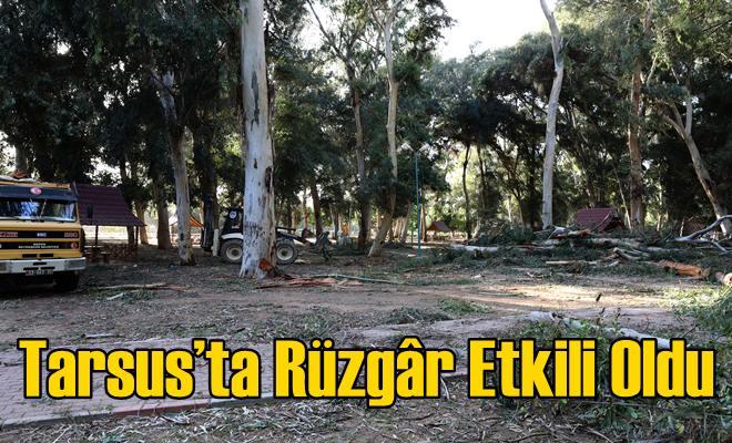 Tarsus'ta Rüzgâr Etkili Oldu