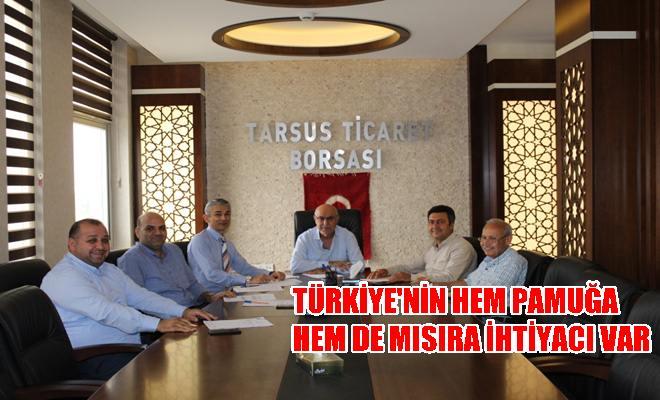Türkiye'nin Hem Pamuğa Hem de Mısıra İhtiyacı Var
