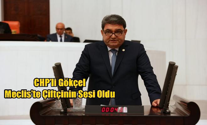 CHP'li Gökçel Meclis'te Çiftçinin Sesi Oldu