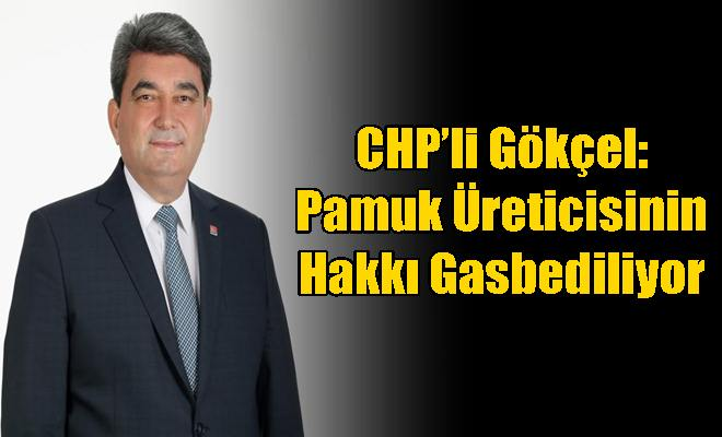 CHP'li Gökçel: Pamuk Üreticisinin Hakkı Gasbediliyor