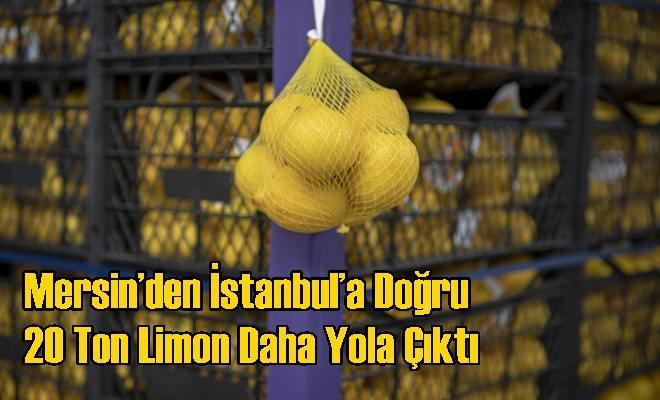 Mersin'den İstanbul'a Doğru 20 Ton Limon Daha Yola Çıktı