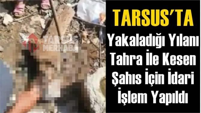 Tarsus'ta Yakaladığı Yılanı Tahra İle Kesen Şahıs İçin Tutanak Tutuldu