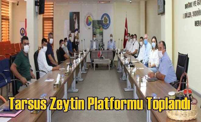 Tarsus Zeytin Platformu Toplandı