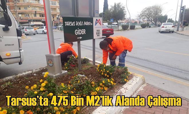 Tarsus'ta 475 Bin M2'lik Alanda Çalışma