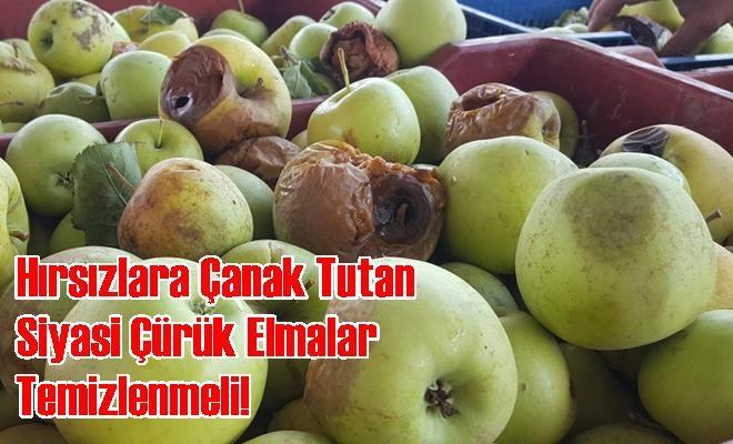 Hırsızlara Çanak Tutan Siyasi Çürük Elmalar Temizlenmeli!