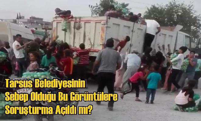 Tarsus Belediyesinin Sebep Olduğu Bu Görüntülere Soruşturma Açıldı mı?