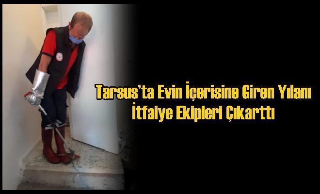 Tarsus'ta Evin İçerisine Giren Yılanı İtfaiye Ekipleri Çıkarttı